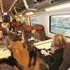 Минимальные тарифы от компании Trenitalia