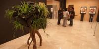В Гранаде проходит конкурс современного искусства