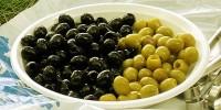 Испанские маслины – визитная карточка Испании в мире