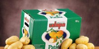 Кооператив Udapa реализует картофель по новым технологиям