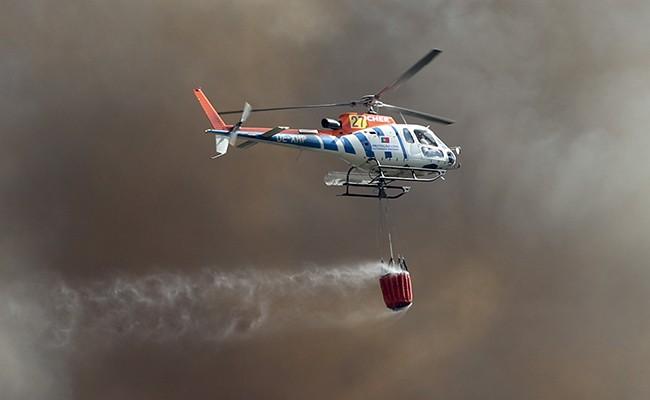 Португалия: меры по борьбе с пожарами