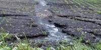 Треть территории региона Малаги подвержено сильной эрозии