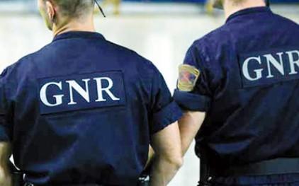 Полиция GNR изъяла 2 тонны двустворчатых моллюсков