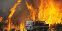 В Испании из-за лесного пожара эвакуируют людей