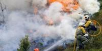 На испанском острове Ибица вспыхнул лесной пожар