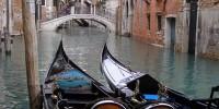 Венецианцы пытаются защитить гондолы