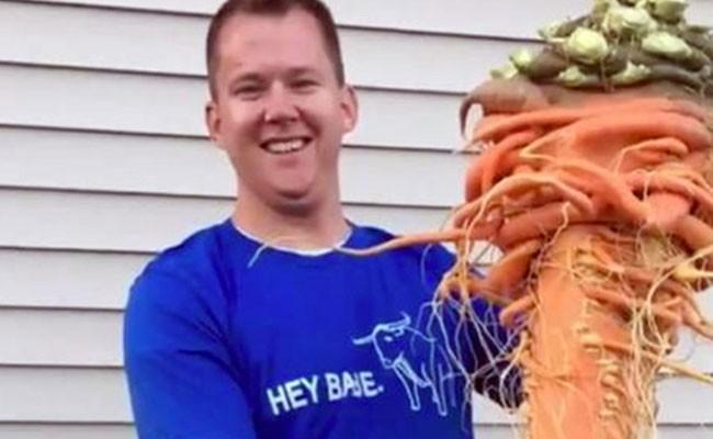 Огромная морковь попала в Книгу рекордов Гиннесса