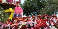 Португалия: Цветочный Праздник на Мадейре