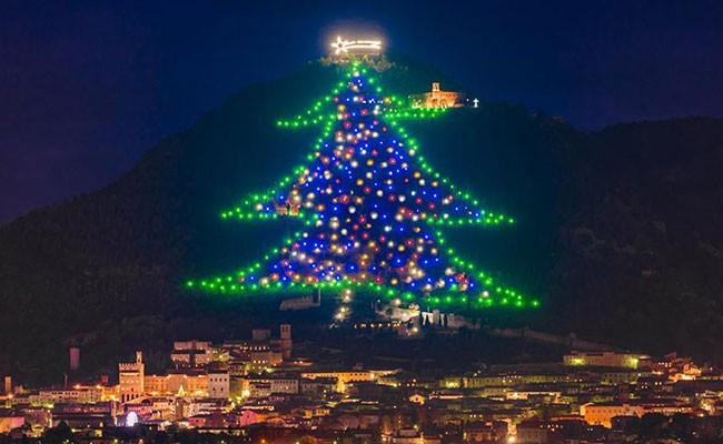 Италия: зажгли самую большую елку в мире