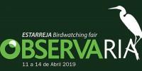 Португалия: ярмарка ObservaRia
