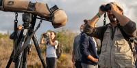 Португалия: «птичий» фестиваль возвращается в Сагреш
