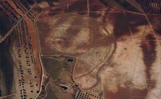 Португальские археологи обнаружили «Вудхендж»