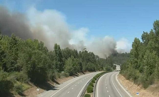 Португалия: шоссе А1 перекрыли из-за пожара