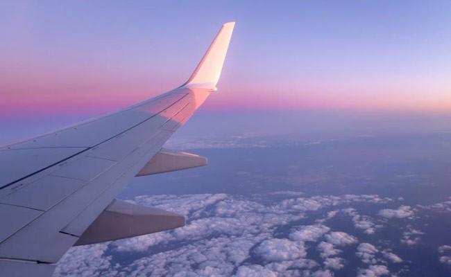 В Португалии арестовали кричавшего в самолете пассажира
