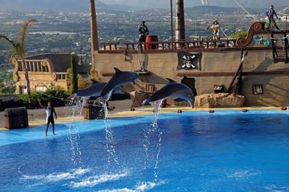 Два испанских аквариума вошли в список 25 лучших в мире