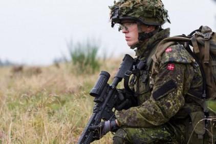 Армия Дании начнет набирать геймер