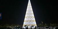 Самая высокая елка в Европе установлена в Испании