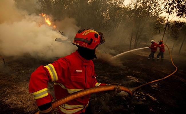 Португалия: день с наибольшим количеством пожаров