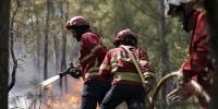 В Португалии число жертв лесных пожаров возросло до 20