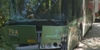 30 человек пострадали в ДТП с автобусом в Италии