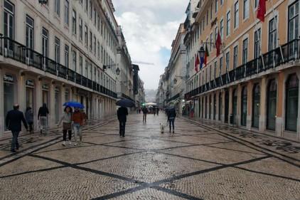 История португальских мостовых: все началось из-за носорога