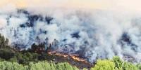 Не менее двух человек стали жертвами бушующих на Канарах пожаров