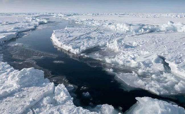 Изучение климатических изменений станет обязательным в школах Италии