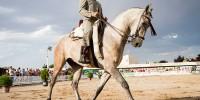 Испания: в Кордове выберут лучшего испанского ковбоя