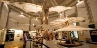Италия: выставка Леонардо-да-Винчи