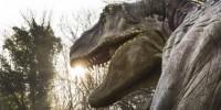 Италия: динозавры в натуральную величину на выставке в Неаполе