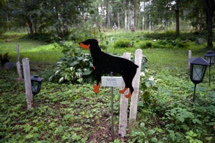 В Испании обнаружено древнее кладбище собак