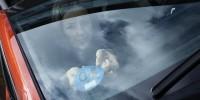 Испания: автомобили с эко-этикеткой «ноль выбросов»