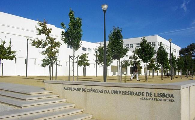 Иностранцы приезжают учиться в Португалию