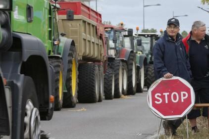 Французские фермеры против испанских