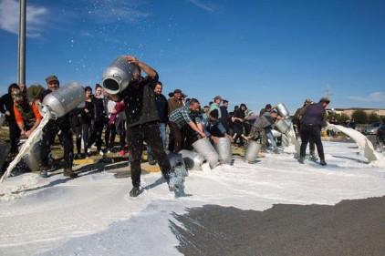 Италия: дороги Сардинии перекрыли «молочные реки»