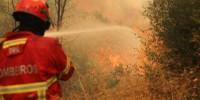 Португалия: сто пожарных борются с огнем в Гимарайше