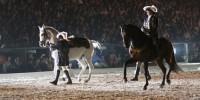 Португалия: ярмарка лошадей в Понте-де-Лима