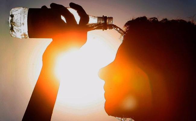 Португалия: лето-2017 было жарким и засушливым