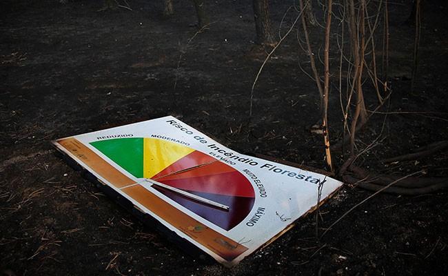 Португалия: компенсации жертвам пожаров