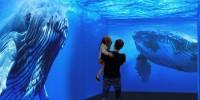 В Испании открылся первый в Европе интерактивный аквариум