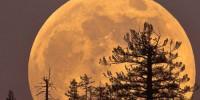 Португалия: прогулка при полной луне в Синтре