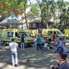 Португалия: на Мадейре дерево упало на людей, 13 погибших