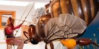 Музей меда - достопримечательность Кольменара