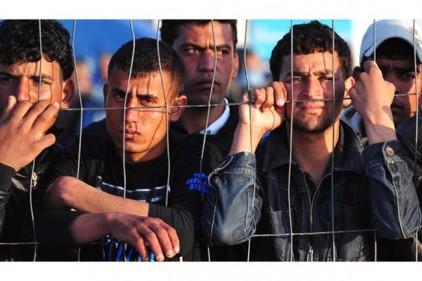 Италия: для мигрантов купят сборные домики из «Икеи»
