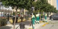 Испания: за смерть сборщицы апельсинов - 2,5 года тюрьмы