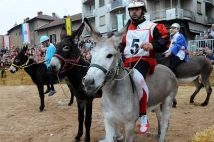 Италия: ослиный турнир пройдет в Пьемонте