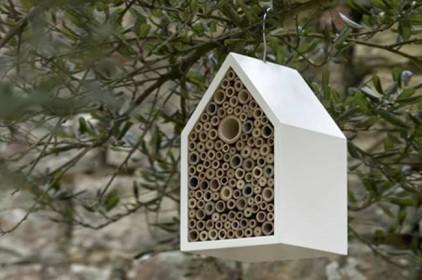 Отель для насекомых появился в Испании