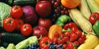 Испания: сервис по доставке свежих продуктов