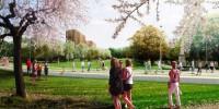 В Барселоне будет создан самый крупный парк в городе