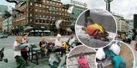Разноцветные голуби напугали жителей Копенгагена